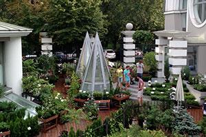 Открытие магазина по продаже растений при Ботаническом саде МГУ «Аптекарский огород»