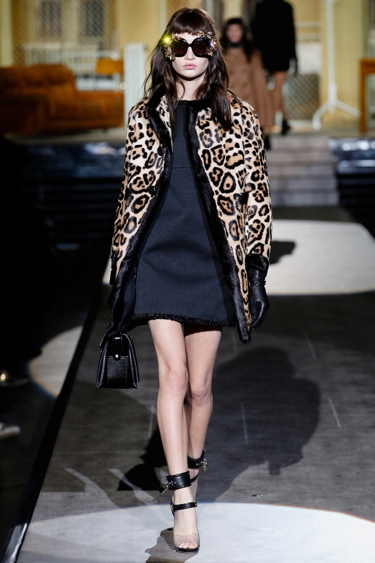 Леопардовая модная куртка — фото новинка от Dsquared²