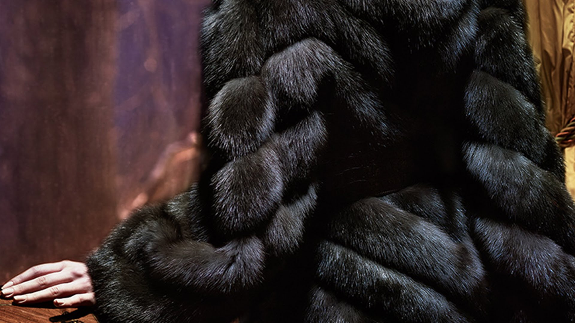 На фото: темный соболь.