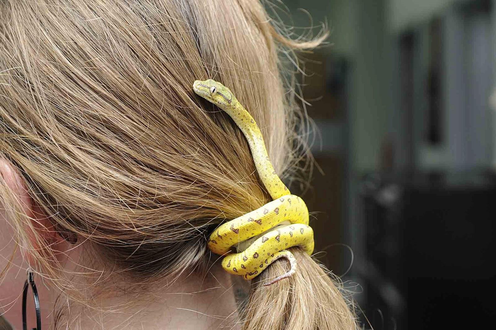 На фото: волосы собраны в хвост и перетянуты резинкой.